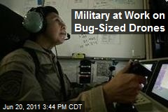 Military at Work on Bug-Sized Drones