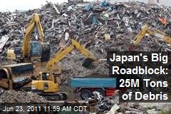 Japan's Big Roadblock: 25M Tons of Debris