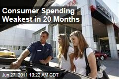 US Consumer Spending: First Decline in 20 Months