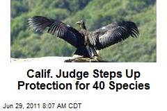 Calif. Judge Steps Up Protection for 40 Species