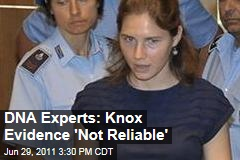 Amanda Knox Murder Trial: DNA Experts Contest Evidence