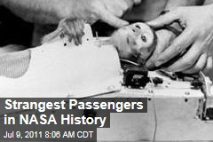 The Strangest Passengers in NASA History