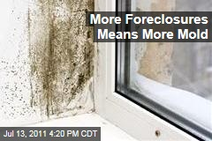 More Foreclosures Means More Mold in Closed-Up Homes