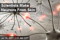 Scientists Make Neurons From Skin
