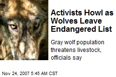 Activists Howl as Wolves Leave Endangered List