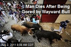 Man Dies After Being Gored by Wayward Bull