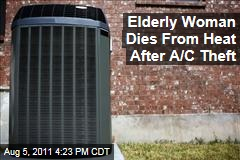 Elderly Woman in Texas Dies from Heat After Theft of Air Conditioner