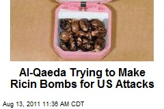 Al-Qaeda Trying to Make Ricin Bombs for US Attacks