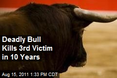 Deadly Bull Kills 3rd Victim in 10 Years