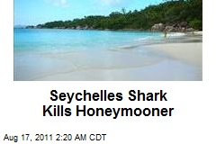 Seychelles Shark Kills Honeymooner