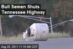 Bull Semen Shuts Tennessee Highway