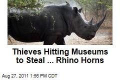 Thieves Busting Into European Museums to Steal Rhino Horns