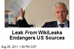 Leak From WikiLeaks Endangers US Sources