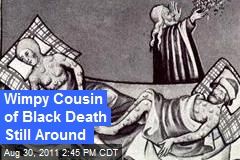 Wimpy Cousin of Black Death Still Around