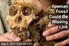 Apeman Fossil May Be Missing Link