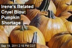 Irene's Belated Cruel Blow: Pumpkin Shortage