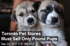 Toronto Pet Stores Must Sell Only Pound Pups