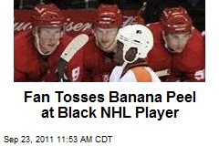 Fan Tosses Banana Peel at Black NHL Player