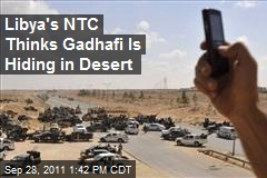 Libya's NTC Thinks Gadhafi Is Hiding in Desert