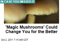 'Magic Mushrooms' Alter Long-Term Personality: Study