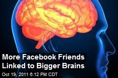 More Facebook Friends Linked to Bigger Brains