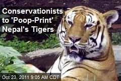 Conservationists to 'Poop-Print' Nepal's Tigers