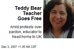 Teddy Bear Teacher Goes Free