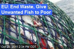 EU: End Waste, Give Unwanted Fish to Poor