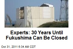 Experts: 30 Years Until Fukushima Can Be Closed