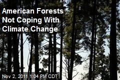 American Forests Not Coping With Climate Change