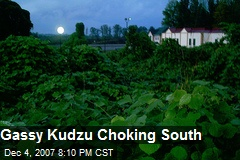 Gassy Kudzu Choking South