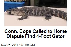 Conn. Cops Called to Home Dispute Find 4-Foot Gator