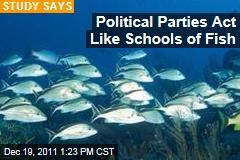 Democrats and Republicans Behave Like Schools of Fish