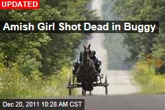 Amish Girl Shot Dead in Buggy