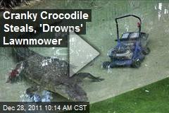 Cranky Crocodile Steals, 'Drowns' Lawnmower