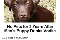 No Pets for 3 Years After Man's Puppy Drinks Vodka
