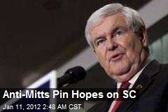 Anti-Mitts Pin Hopes on SC