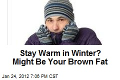 Stay Warm in Winter? Might Be Your Brown Fat