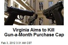 Lock 'n Load: Va. Aims to Kill Gun-a-Month Cap
