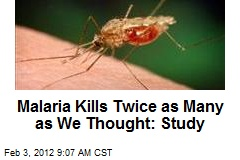 Malaria Kills Twice as Many as We Thought: Study