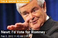 Newt: I'd Vote for Romney