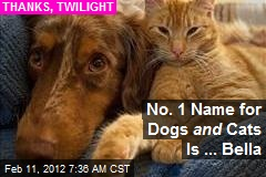 No. 1 Name for Dogs and Cats Is ... Bella