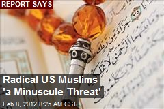 Radical US Muslims 'a Minuscule Threat'