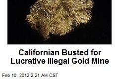 Californian Busted for Lucrative Ilegal Gold Mine