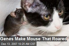 Genes Make Mouse That Roared