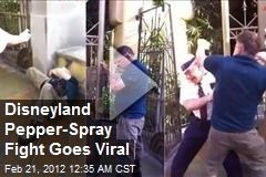 Disneyland Pepper-Spray Fight Goes Viral