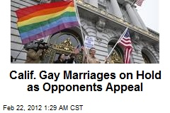 Calif. Gay Marriages on Hold as Opponents Appeal