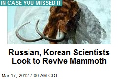 Russian, Korean Scientists Look to Revive Mammoth