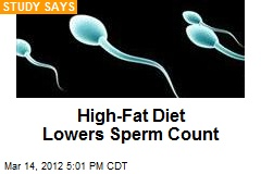 High-Fat Diet Lowers Sperm Count