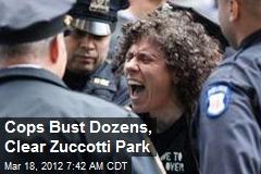 Cops Bust Dozens, Clear Zuccotti Park
